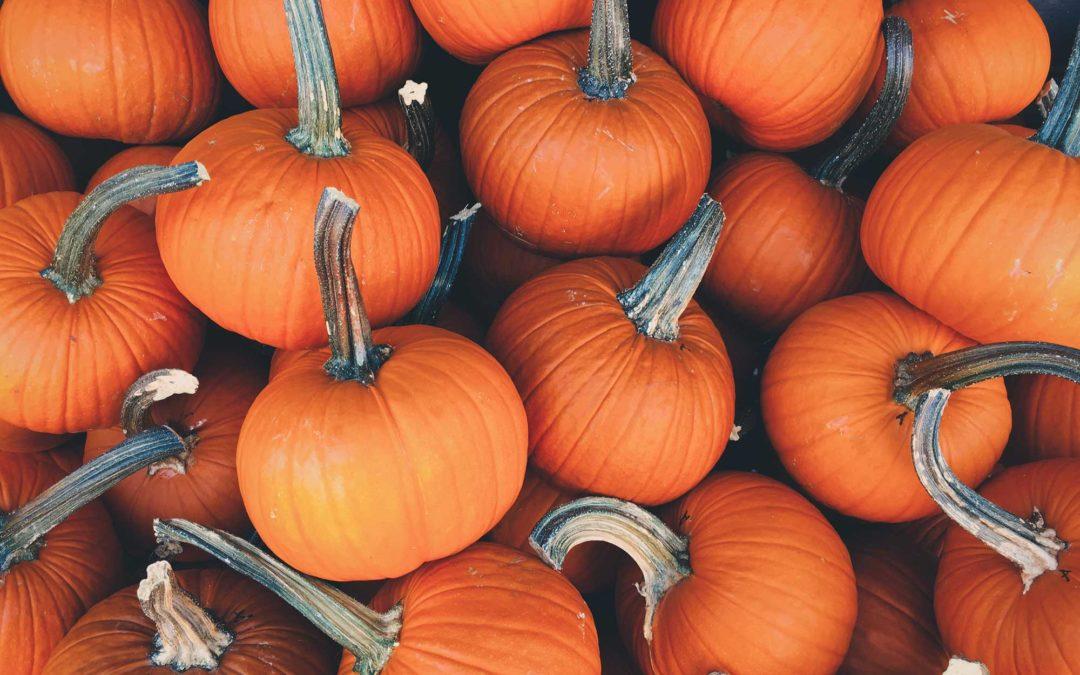 Octoberfest Photo Gallery